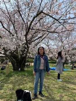 桜1903_2.jpg